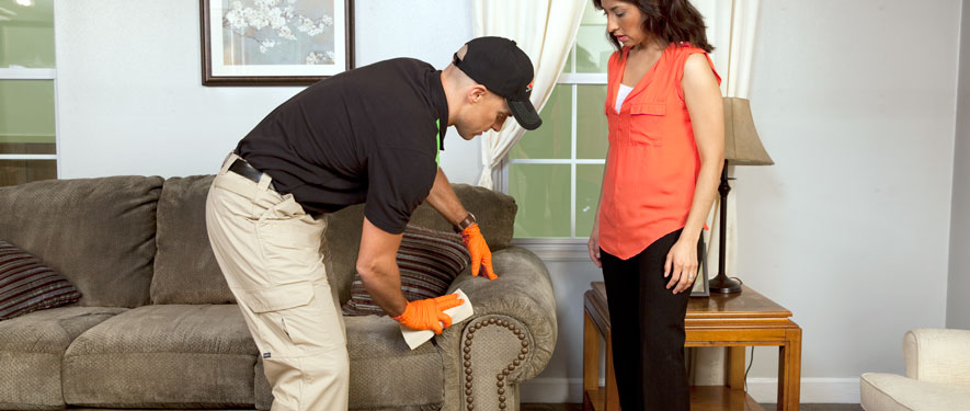 Euless, TX carpet upholstery cleaning