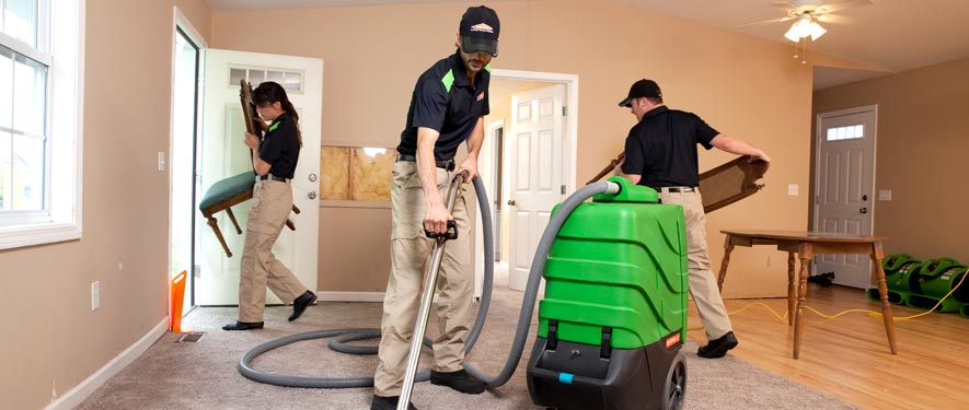 Euless, TX cleaning services